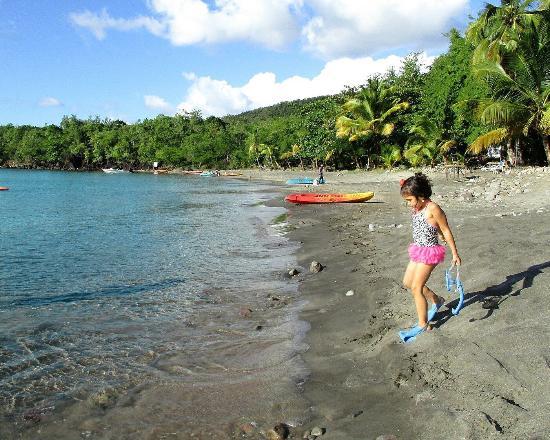 Anse La Raye, St. Lucia: Anse Cochon Beach
