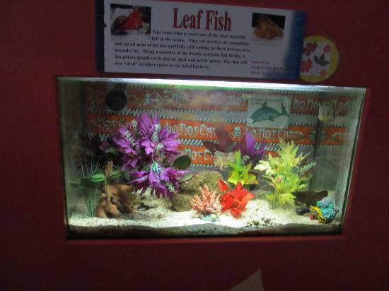 Team ECCO Ocean Center & Aquarium: Aquarium