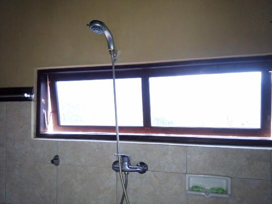 Puri Alam Bali Bungalows: the bathroom window