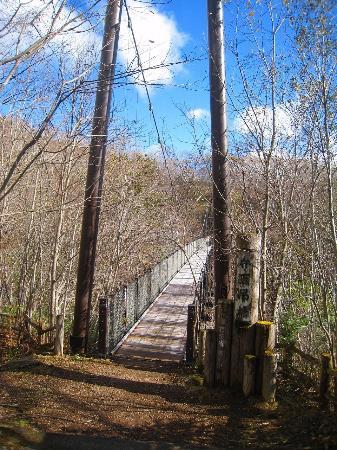 Kyukamura Nasu : 弁天吊り橋