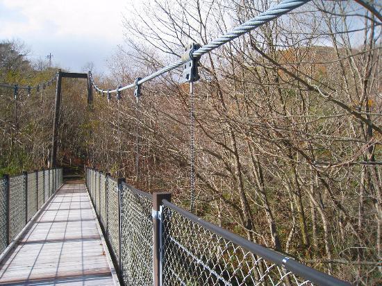 Kyukamura Nasu : 吊り橋