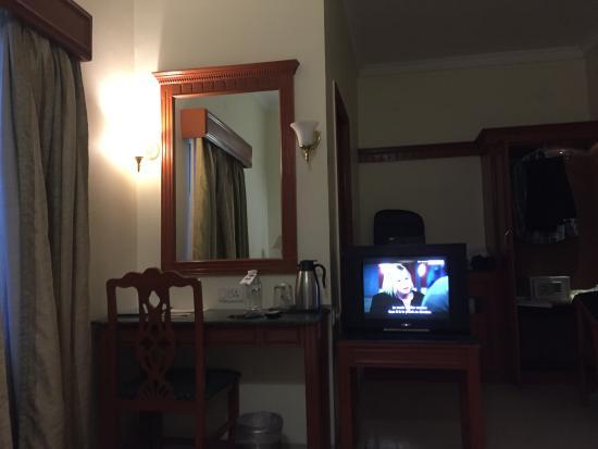 AMS Raj Palace Sundar: View of my room