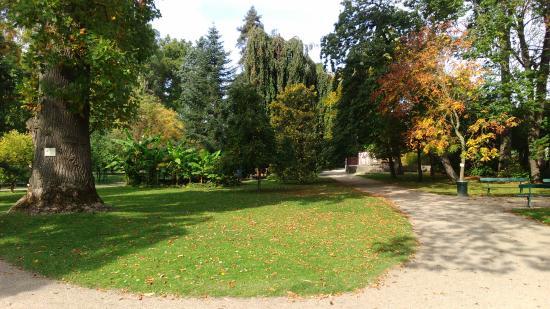 La biquette picture of jardin botanique de tours tours for Boulevard jardin botanique