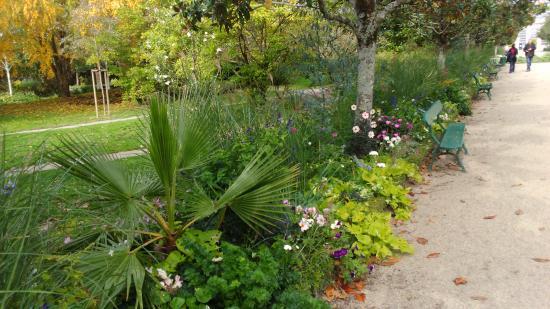Petite all e photo de jardin botanique de tours tours for Jardin botanique tours