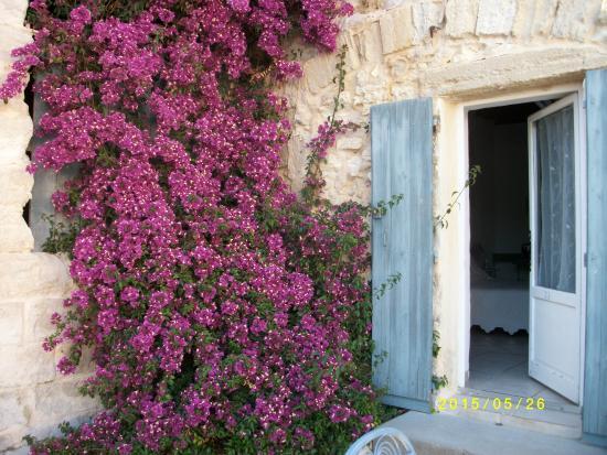 Sylvereal, Francia: Magnifique bougainvillié à l'entrée de la chambre