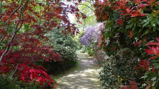 D but de visite photo de parc botanique de cornouaille combrit tripadvisor - Jardin botanique de cornouaille ...