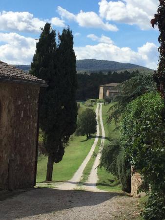Amorosa, Italie : photo1.jpg