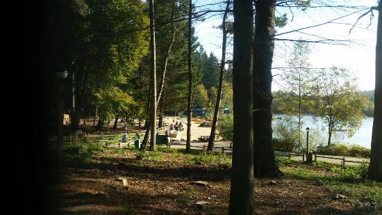 Landscape - Center Parcs Longleat Forest Photo