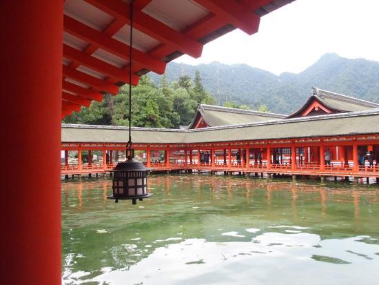 厳島神社 - Picture of Itsukushima Shrine, Hatsukaichi - TripAdvisor