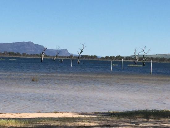 Lake Fyans Holiday Park: photo2.jpg