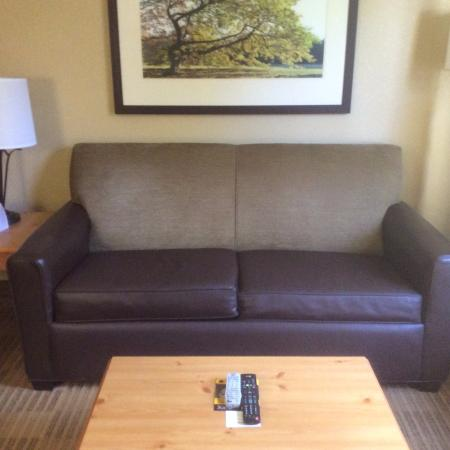 Extended Stay America   Boston   Westborough   Computer Dr.: Sofa
