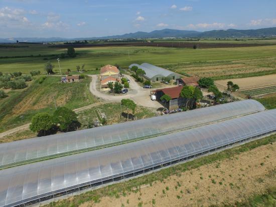 Azienda Agricola La Magia