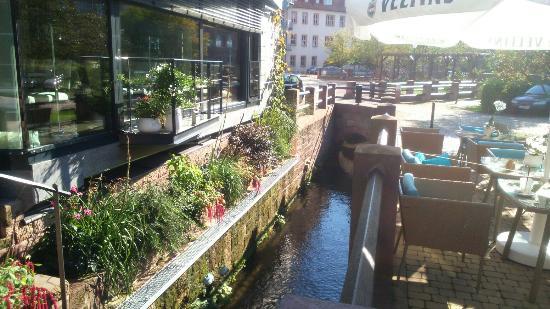 Heilbad Heiligenstadt, ألمانيا: Café Barock