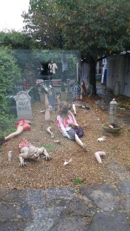 Montacute TV Radio Toy Museum: Morbid ?