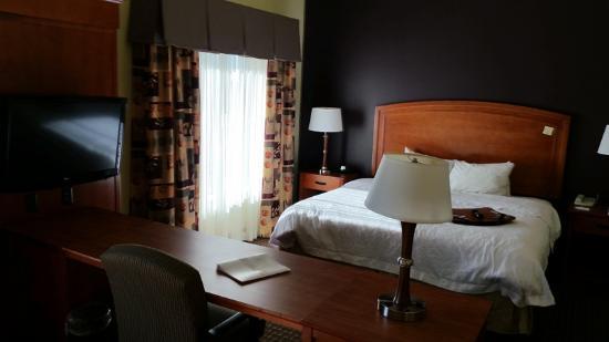 Hampton Inn & Suites Moline-Quad City International Airport: King bed studio suite
