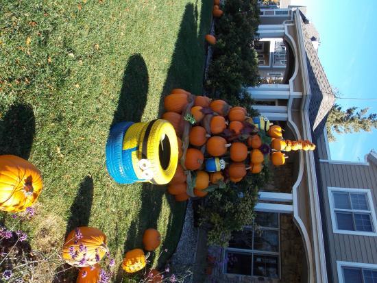 Newport Resort: Autumn at the Newport