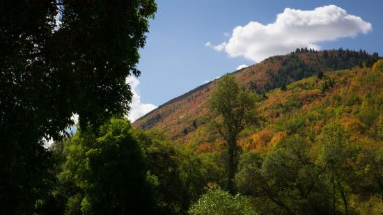 Payson, UT: beautiful hillside colors