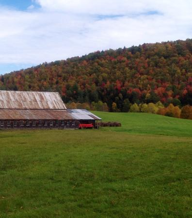 Echo Lake Inn: Barn near by