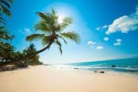 Melia Nassau Beach - All Inclusive: From beach