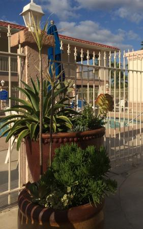 BEST WESTERN Port Aransas: Near pool.