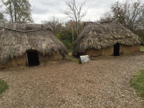 SunWatch Indian Village/Archaeological Park: photo2.jpg