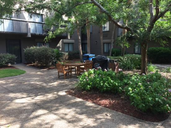The Lodge at Gainesville: courtyard view