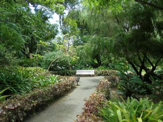 FB_IMG_1445714929335_large.jpg - Picture of Botanical Gardens (Jardin Botanic...