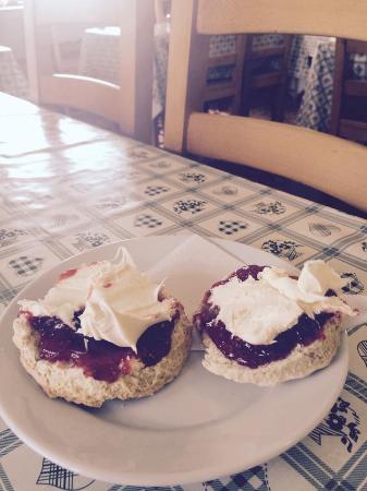 Polzeath, UK: The gorgeous homemade scones