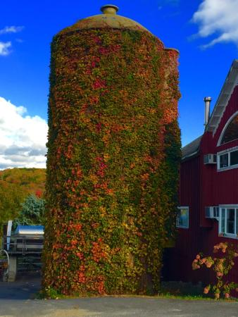 Warren, CT : The foliage in the middle of October is just spectacular! And the Sachem Farmhouse is an ideal l
