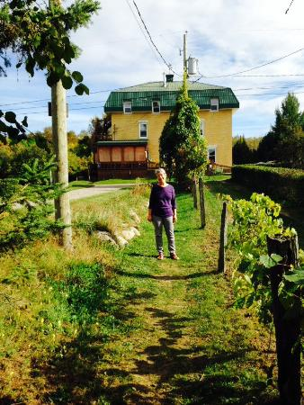 Nominingue, Canada: Path from lake to chez ignace