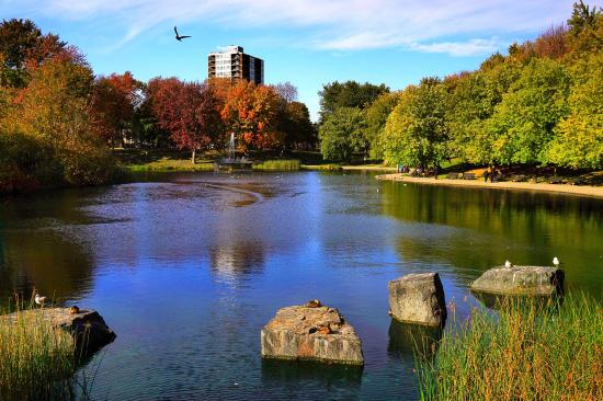 La Fontaine Park