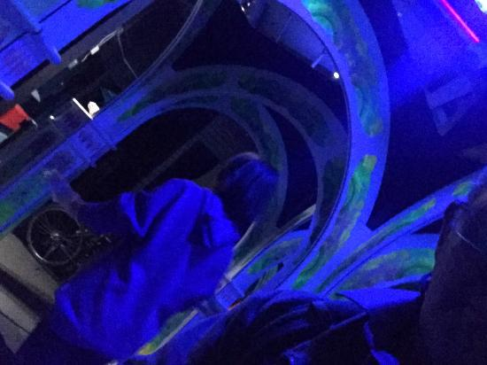 Magowan's Infinite Mirror Maze: photo2.jpg
