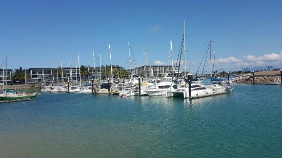 Beachside Magnetic Harbour Holiday Apartments: 20151024_150320_large.jpg