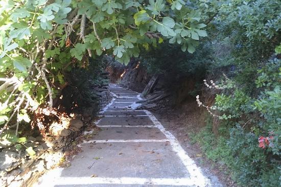 Village Path: Gangvei gjennom dalen i Batsi