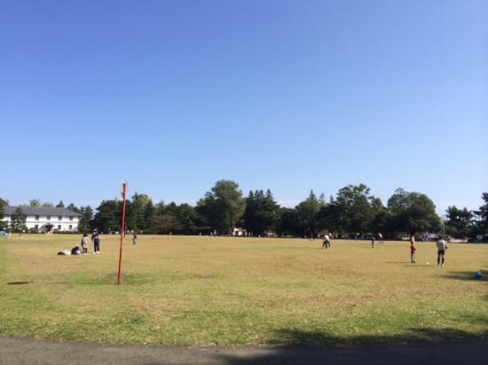 Tsutsujigaoka Park: とても広大な公園です