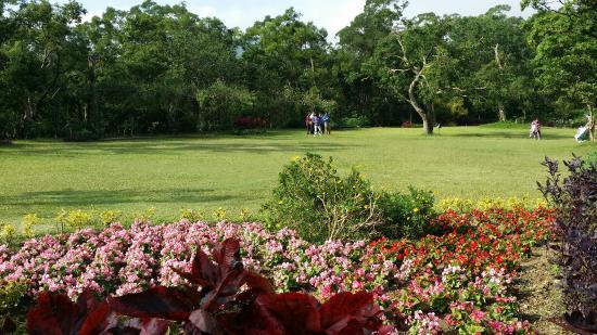 Navi Garden