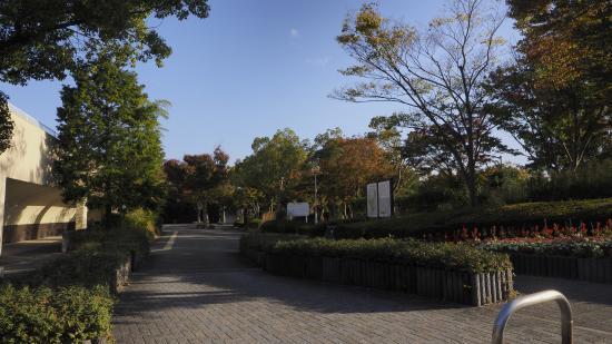 Wani Park