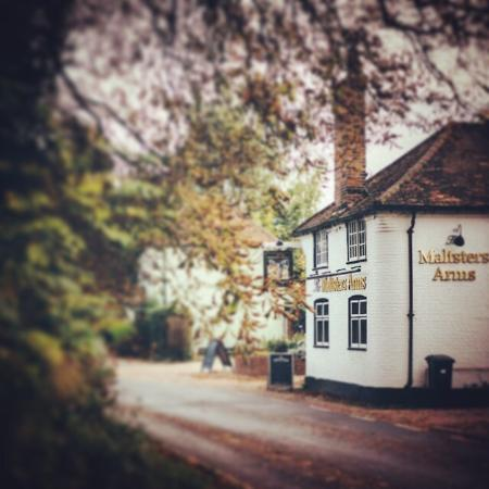 Rotherfield Greys, UK: The Maltsters Arms