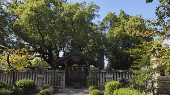 Shonanko Grave