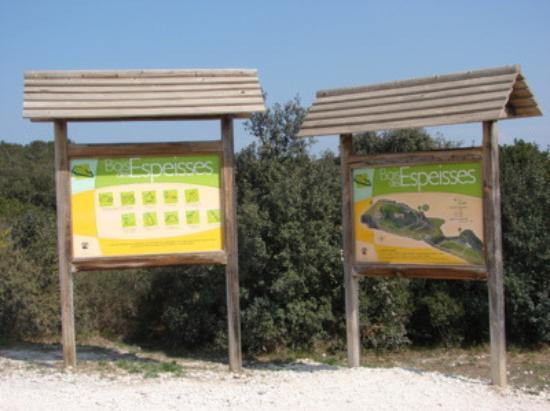 Nîmes, Frankrike: Le bois des Espeisses