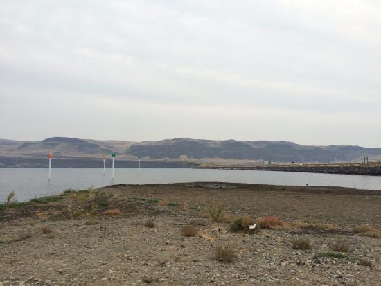 dock picture of ginkgo petrified forest state park vantage rh tripadvisor com