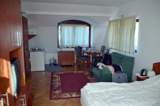 Hotel Pension Helios : Есть небольшая плита, холодильник, посуда