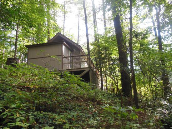 Tiger Creek Falls Inn : back of chalet