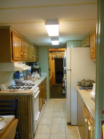 Tiger, GA: kitchen