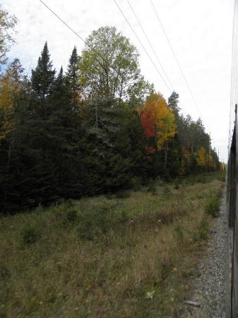 Adirondack Scenic Railroad: View from train window