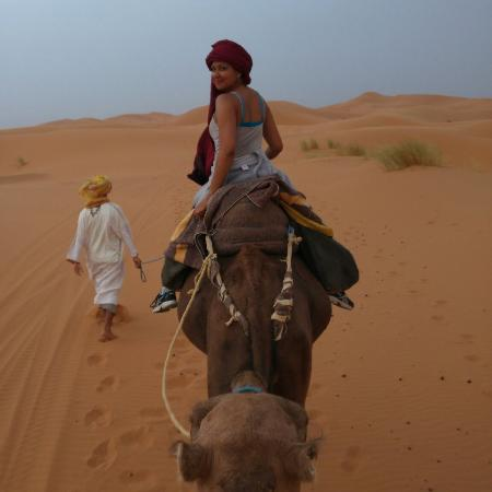 Morocco Best Tours - Day Tours: IMG_20150903_001931_large.jpg