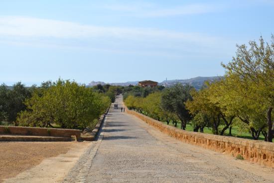 Valle dei templi l 39 impegnativo percorso per raggiungere i for Piscina g s roma 53 roma