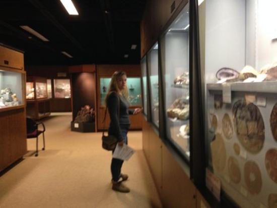 Mineral Museum of Michigan: Well-lit and spacious displays!