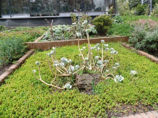 Jardim botanico bogot picture of jardin botanico de for Jardin botanico bogota