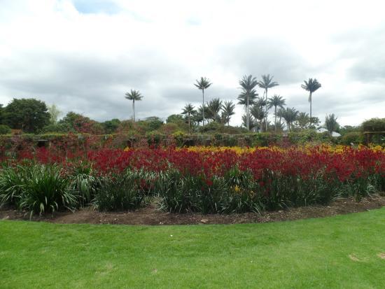 Jardim Botanico Bogot Picture Of Jardin Botanico De Bogota Jose Celestino Mutis Bogota